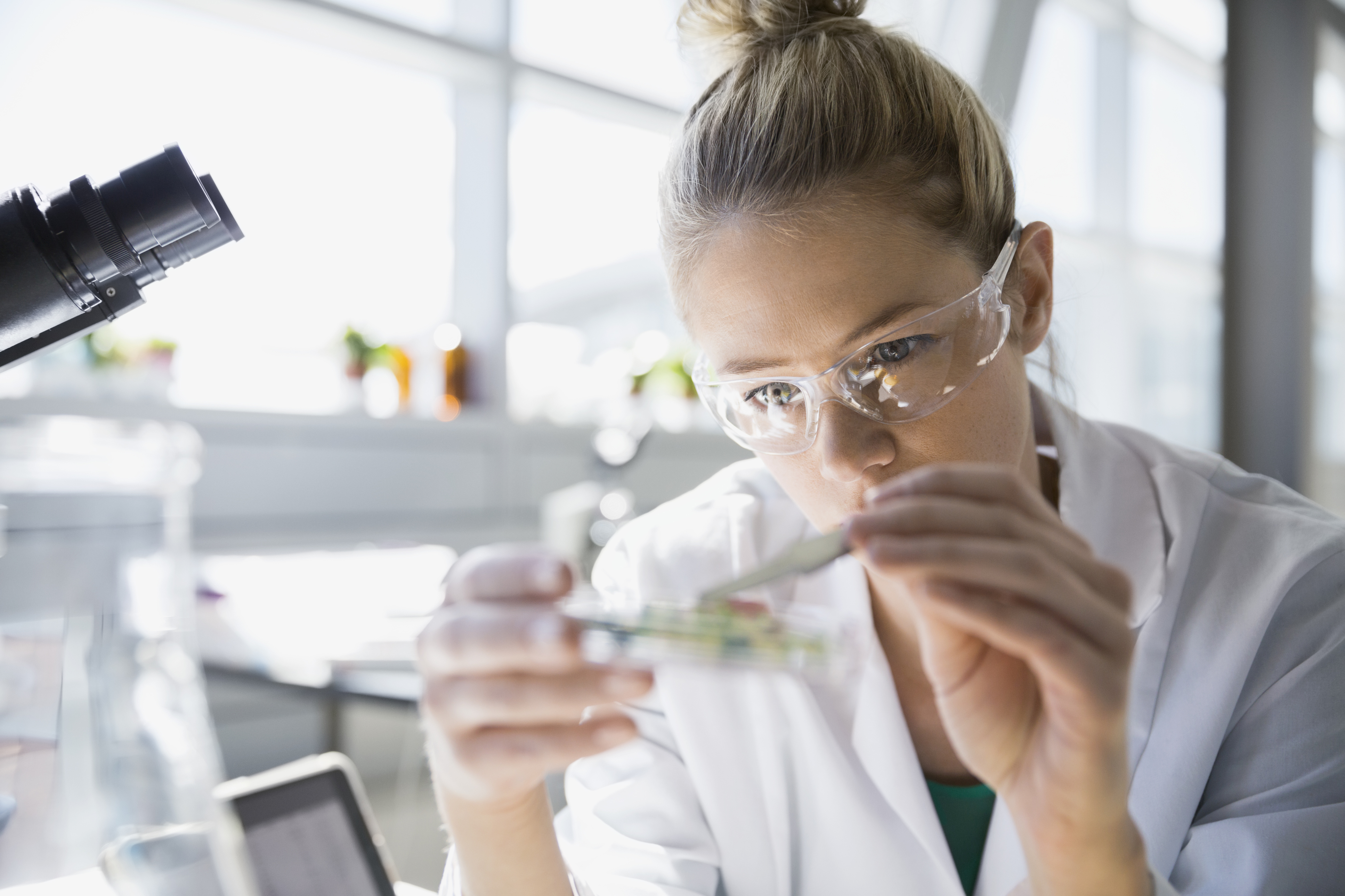 3e6dd520dd 10 Reasons to Consider a Career in the STEM Fields - Professional Woman s  Magazine